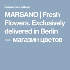 MARSANO | Fresh Flowers. Exclusively delivered in Berlin — магазин цветов