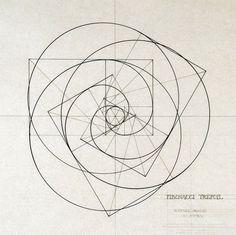 fibonacci spheres svg - Hledat Googlem