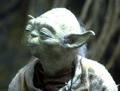 Yoda Squinting