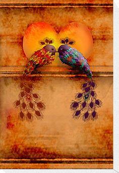 Love Birds by Karin Taylor