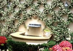This is what I meant with the Star Jasmine lattice. I think a lattice like this in the rectangular sections of the wall would look really lovely... Creeping ...