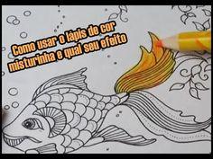 Como usar o lápis de cor misturinha e qual seu efeito?   Luciana Queiróz...