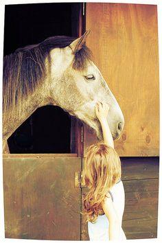 Nell'ippoterapia è molto importante instaurare una buona relazione con il cavallo che va rispettato e trattato con amore e complicità.