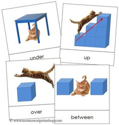 """Includes: 18 prepositions with visual images  These cards are approx 3¼"""" x 3¼"""". This file is in PDF format."""