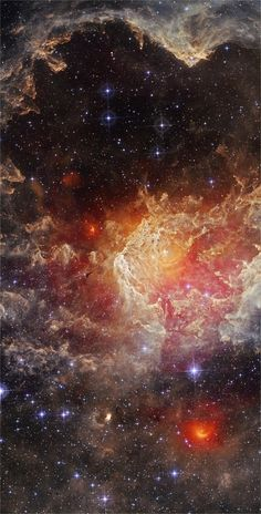 NGC 7822. A young star forming complex in the constellation of Cepheus. The complex encompasses the emission region designated Sharpless 171, and the young cluster of stars named Berkeley 59. The complex is believed to be some 800-1000 pc distant, with the younger components aged no more than a few million years. .. pp