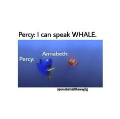Hahaha this would totally happen! Although Im not obsessed or crazy about Percy Jackson, this is hilarious.