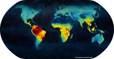 World map of color coded density of vertebrate species.