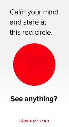 This one is stumping the internet - What's inside the red circle?
