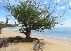 Praia do Satu, Caraíva, Bahia
