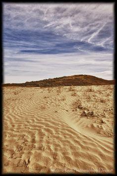 Great Sand Hills in Southwest Saskatchewan.