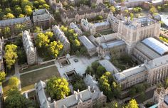 """Forbes magazine named Yale University as one of the """"World's Most Beautiful College Campuses."""" Altogether 14 campuses made the list, chosen by architects and campus designers. Georgia College, College Campus, College Life, Duke College, Hunter College, Disney College, Uni Life, College Board, College Football Rankings"""