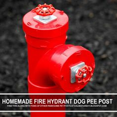 Dog's love to pee on these old fashioned looking fire hydrants. Dog Fire Hydrant, Fire Hydrants, Dog Friendly Garden, Fake Fire, Red Spray Paint, Dog Playground, Toy Dog Breeds, Dog Yard, Dog Urine