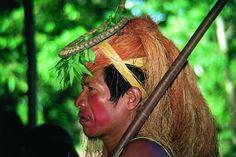 http://www.larousse.fr/encyclopedie/data/images/1315545-Amazonie_Am%c3%a9rindien_Yacas.jpg