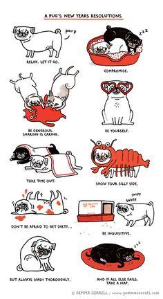 Pug Resolutions