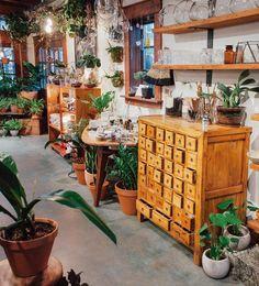 Terrarium bar and a whole lot of houseplants in the mercantile. Flea Market Displays, Store Window Displays, Shop Displays, Flower Truck, Garden Center Displays, Garden Centre, Indoor Garden, Outdoor Gardens, Boutique Shop
