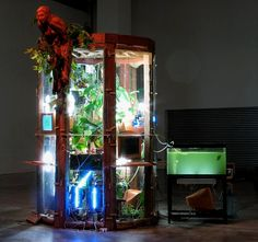 Biomodd creates symbiotic relationships between plants and computers, and ignites conversations among the community. Why not join the conversation?