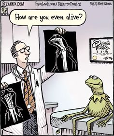 Bizarro! by Dan Piraro March 7, 2017 -- The Muppets -- Kermit the frog has a doctor's appointment --