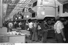 Kombi assembly line....baby got back