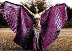 Purple isis wings