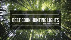 Best Coon Hunting Lights 2017