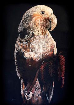 The Kākā is Calling Sofia Minson Oil Painting New Zealand Artwork Art Maori, New Zealand Art, New Zealand Tattoo, Maori Designs, Nz Art, Kiwiana, Bird Art, Art Inspo, Painting Inspiration
