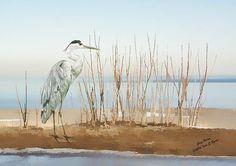 New #birdprint #wildlifeprint #wildlife by Iain S Byrne