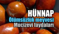 olumsuzluk-meyvesi-hunnap-b[1] Diet And Nutrition, The Cure, Food And Drink, Herbs, Weight Loss, Fruit, Vegetables, Youtube, Ethnic Recipes