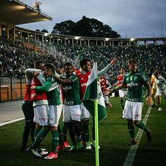 O Porcoembu é nosso!  Palmeiras 1 x 0 Grêmio