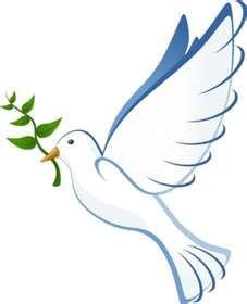 dove & olive branch