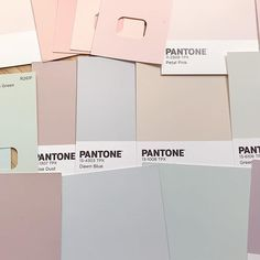 All of the lovely muted pastel colours. Creating colour combinations may be one of my favourite things. Wild Friday night here. Wild  Anyone else get excited over colour matching? #colorcolourlovers #pastelloversunite #brandstories #thatsdarling #darlingweekend #pastelaesthetic #inspiremyinstagram #youhadmeatpink #pastelminimal #livingpastel #pocket_creative #creativehappylife #colourmyworld #stationerygeek #pastellovers #friyay #smallbiz