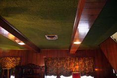 Graceland Ceiling carpeted!