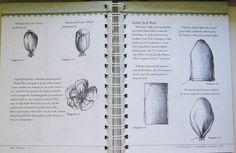 Gallery.ru / Фото #61 - Ribbonwork The Complete Guide - Orlanda