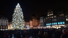 11 European Christmas markets for the best gifts ever Christmas In Europe, Best Christmas Markets, Christmas Time, Strasbourg, Photo Galleries, Best Gifts, Marketing, Holiday Decor, Denmark
