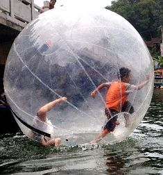 Fun in a bubble?? With several types of balls, activities only are limited by your imagination
