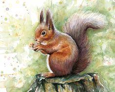Squirrel Watercolor, Art by Olga Shvartsur