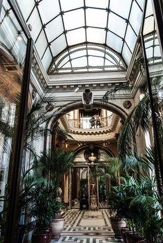 The conservatory of the museum Jacquemart André, Paris
