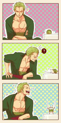 Thats cute.. Most of all zoro laughed.. Thats rare these days #zoro #onepiece #santuryu