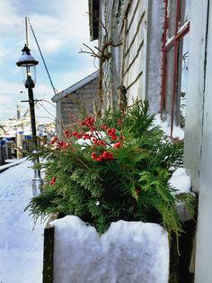 Nantucket Island December 2016 snowfall.