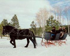 Western Reborn : Le cowboy sans famille [Trailer] - YouTube