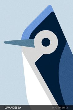 Free bird illustration wallpapers for iphone