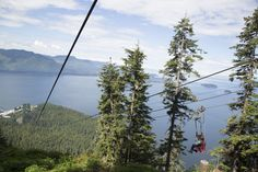"""Experience the world's largest #zip-line 5,330 feet long, 1,300 foot vertical drop, soaring 300 feet above the ground. Unlike anything you've seen before, the ZipRider cable ride at Icy Strait Point is truly a """"once in a lifetime #experience."""" #ShoreExcursion"""