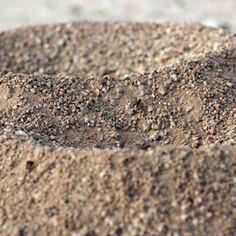 Ant hills can cause unsightly mounds on your lawn and kill grass.