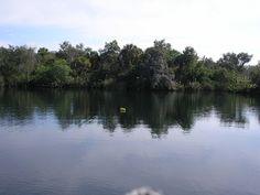 Little Salt Springs in Sarasota County, Florida.