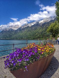 Lake Brienz, Iseltwald, Switzerland - On the way to Interlaken the...