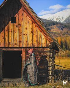 Ked je zvedavost silnejsia. #liptov je prosto #nadherny ZDIELAJ | SLEDUJ | VYHRAJ  Foto @marianligda  #whitedogsk #travelwrap #cestuj #zdielaj #fot #madeinliptov #zapadnetatry #liptovskymikulas #drevenica #slovensko #slovakia #streetphotography #photonature #landscapephotography #lifestyle #hory #insta_svk #instaslovakia #madeinslovakia #dnescestujem #minimalism