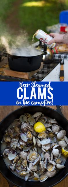 Learn how to make this simple recipe for Beer Steamed Clams – so easy you can ev… Learn how to make this simple recipe for Beer Steamed Clams – so easy you can even make them on the campfire! Includes instructions for cooking at home or on the campfire. Clam Recipes, Beer Recipes, Barbecue Recipes, Fish Recipes, Seafood Recipes, Great Recipes, Cooking Recipes, Favorite Recipes, Asian Recipes