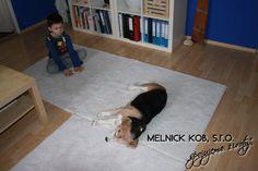 Tadeaš and dog