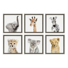 Isabelle & Max™ The sweetness of these safari animals is perfectly captured in this adorable art print set by Amy Peterson. They'd look great together on a wall or hung separately throughout your house. Printed and framed in the USA in Waunakee, Wisconsin, this framed floating canvas art set will be a pleasure to look at every day in your living room, bedroom, nursery, or any room in the home. Printed on gallery-wrapped canvas and framed with a gray-washed finish lightweight, this colorful… Mdf Frame, Canvas Frame, Canvas Wall Art, Canvas Prints, Wildlife Safari, Safari Animals, Wall Art Sets, Wall Art Decor, Room Decor