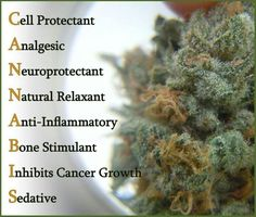 All in one! :) via | Mother Hemp Products