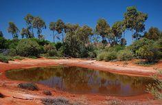 Top Ten Attractions in Alice Springs